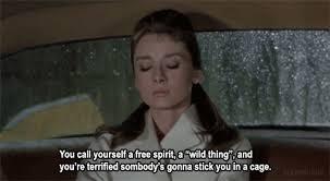 free spirit 5