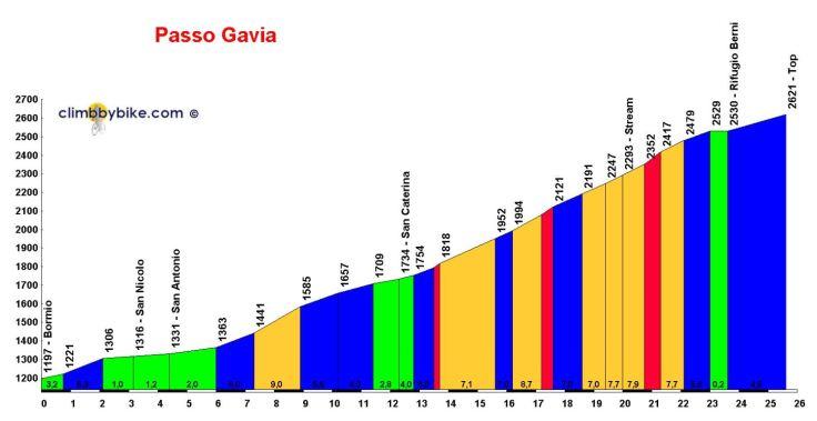 Gavia Profile 1.JPG